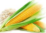 ingredienti per Ricetta boilies al mais