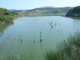 Caratteristica del lago Angitola.