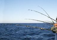 pesca dalla barca a maggio