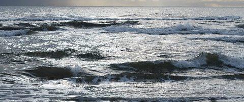 surf casting mese