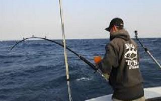 Cosa si pesca dalla barca
